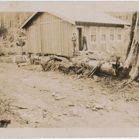 http://archives.saturnaheritage.ca/files/static/manzano_collection/2014-8-2-16.jpg